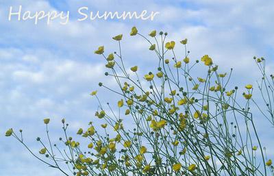 happy-summer-2011